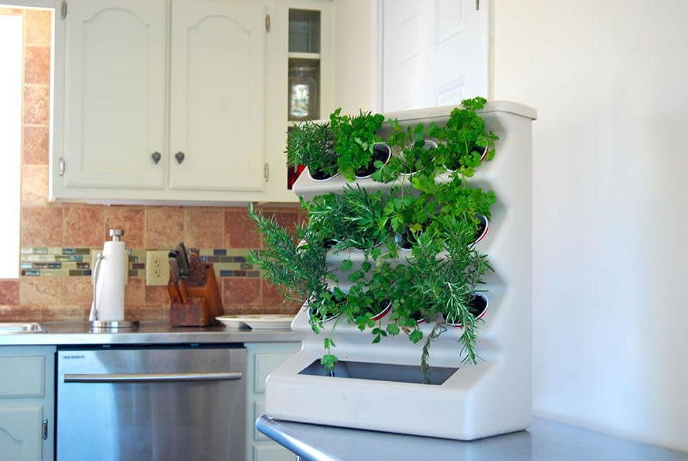 गर्मी के मौसम में किचन में जाना किसी आफत से कम नहीं लगता क्योंकि गैस के कारण वैसे भी किचन गर्म हो जाती है और ऊपर से उसम का मौसम।