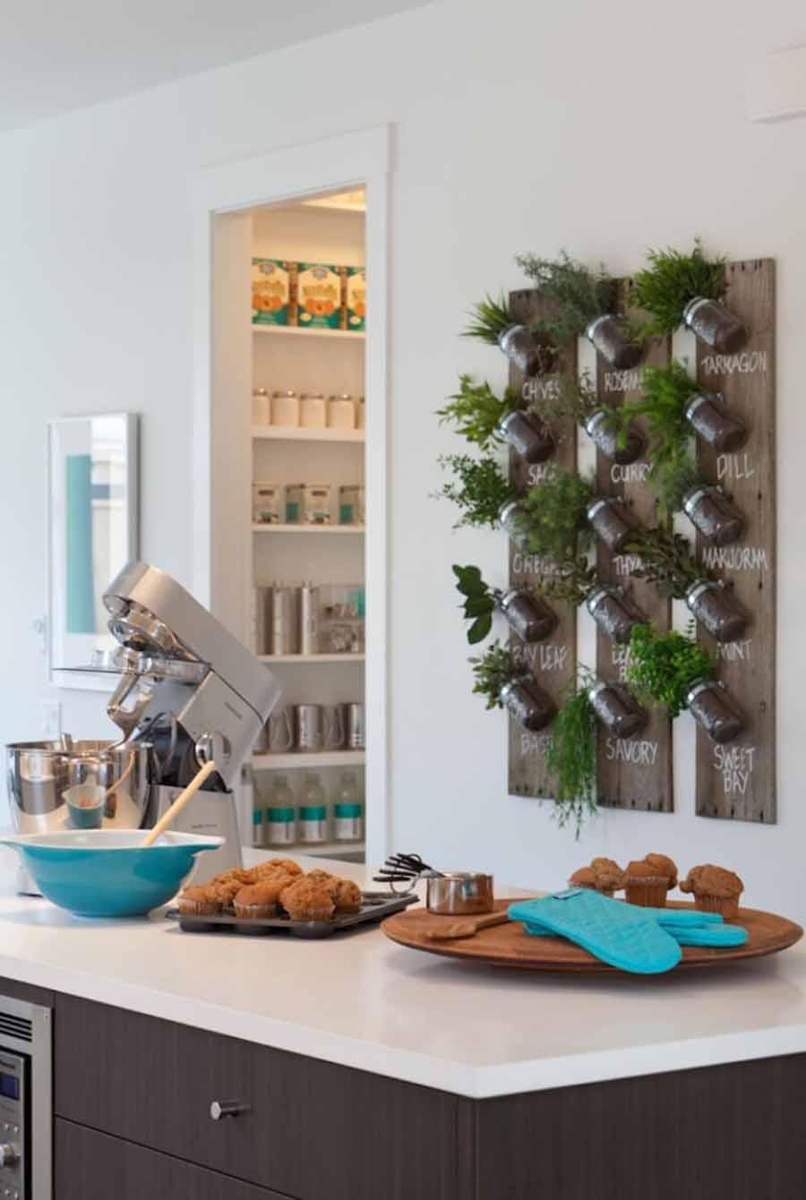 ऐसे में किचन को कूल-कूल बनाने के लिए आप इंडोर प्लांट्स लगा सकते हैं। पौधे सिर्फ वातावरण ही शुद्ध नहीं करते बल्कि घर व किचन को ठंडा रखने में भी मदद करते हैं।