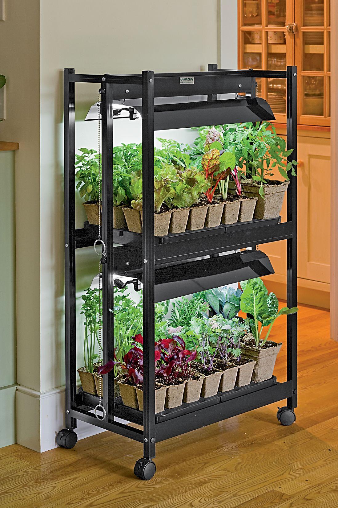 रैंक प्लांट्स स्टैंड  भी आपकी किचन को खूबसूरत दिखाएंगे।