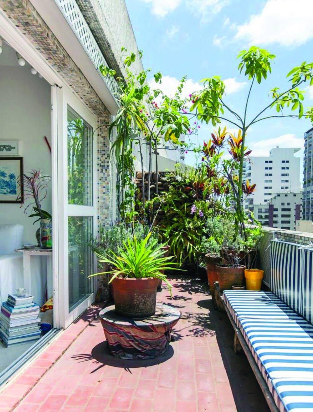 घर के अंदर के वातावरण को शुद्ध और प्रदूषण फ्री रखने के लिए आप इनडोर गार्डनिंग कर सकते हैं।