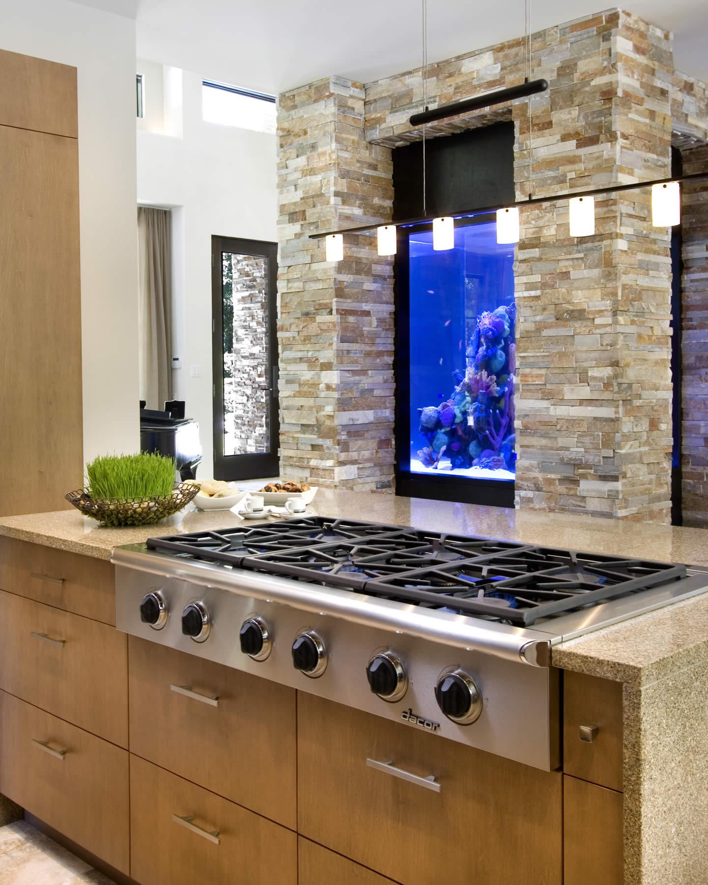 किचन में खाली स्पेस है तो आप वहां भी एक्वेरियम रख सकते हैं।