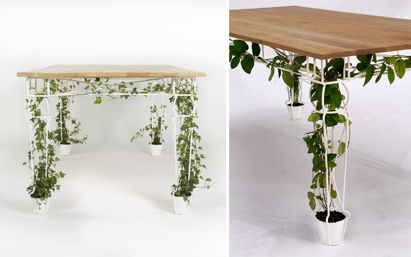 इस तरह का एक प्लांटर-कम-टेबल आपके घर को सुदंर दिखाते के साथ वातावरण के अनुकूल भी होगा।