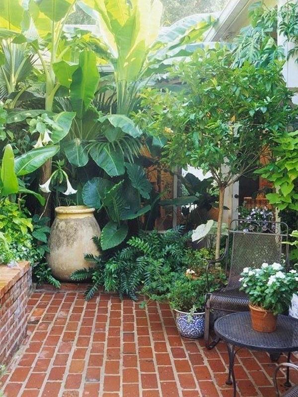 चलिए अब आपको दिखाते हैं घर की छत या बालकनी में गार्डन बनाने के आइडियाज...