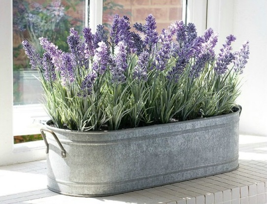घर में पड़े पुराने टब को रब्बी के भाव बेचने की बजाए लैंवेडर या कोई और खुशबूदार फूल उगाने के लिए लगाएं। आप इसे पेंट करके नया रूप भी दे सकती हैं
