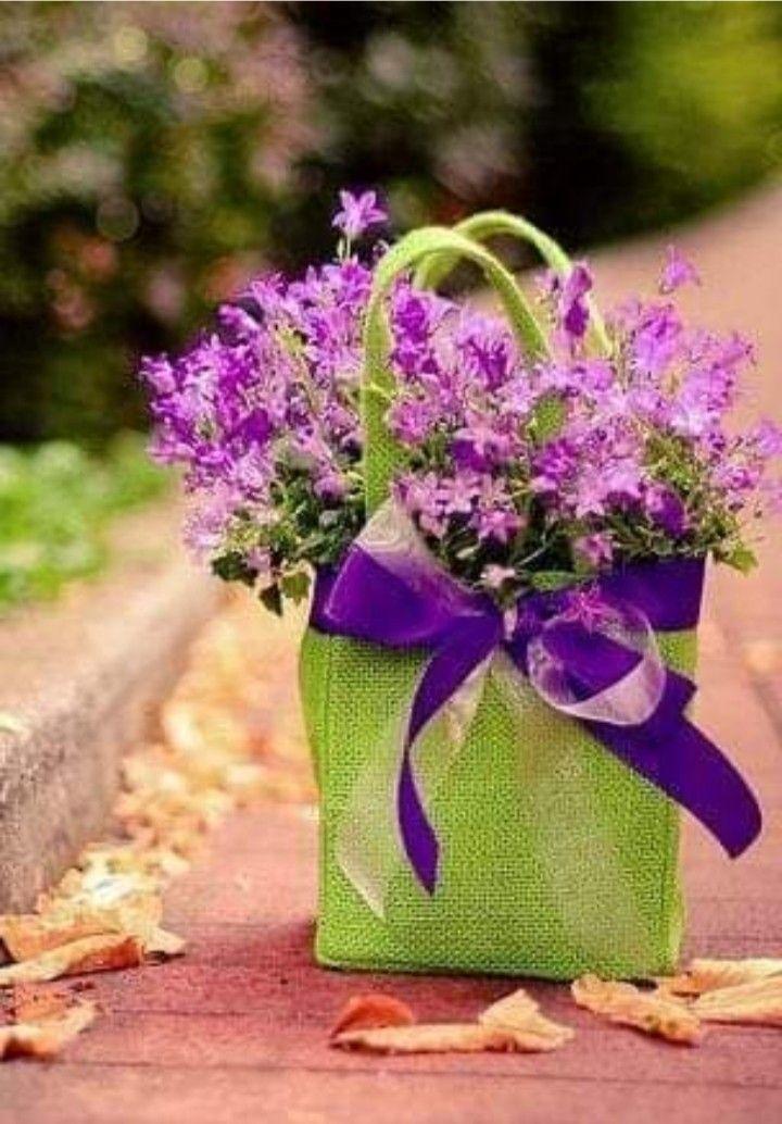 मई-जून की झुलसाती धूप में फूल आंखों को शीतलता देते हैं।