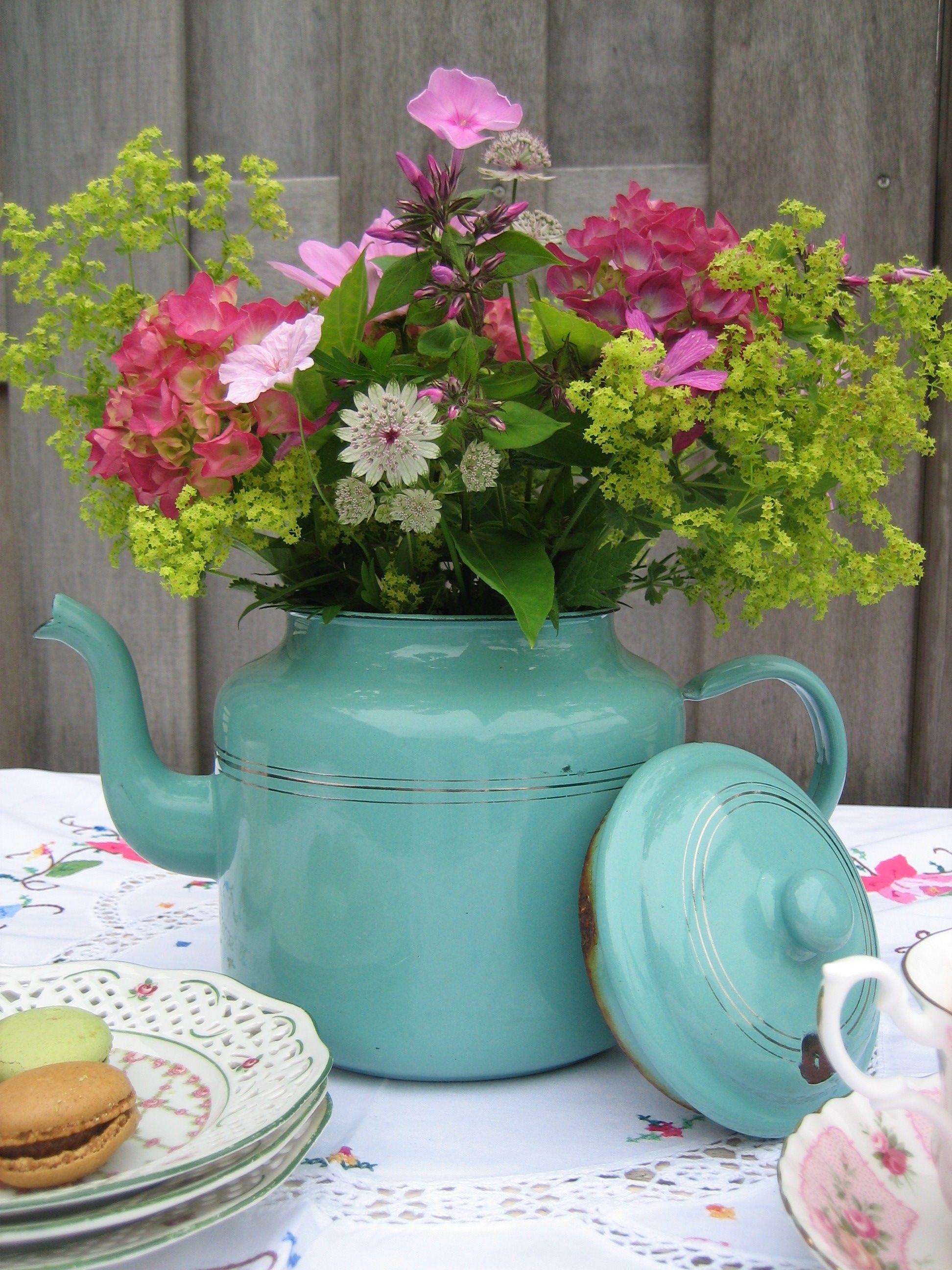 इस फूल को भी आप आसानी से अपने घर में लगा सकते हैं।