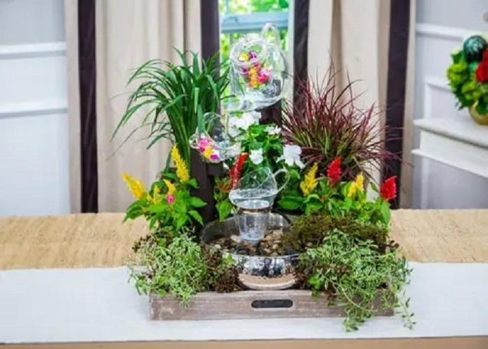 गार्डन में लगे पौधे ना सिर्फ घर के वातावरण को शुद्ध करते हैं बल्कि इससे घर की शोभा भी बढ़ती है।