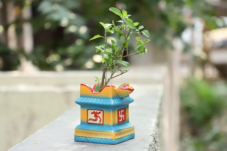 मान्यता है कि नवरात्रि के दिनों में तुलसी का पौधा लगाने से मां लक्ष्मी प्रसन्न होती है और सुख-स्मृद्धि का वरदान देती है।
