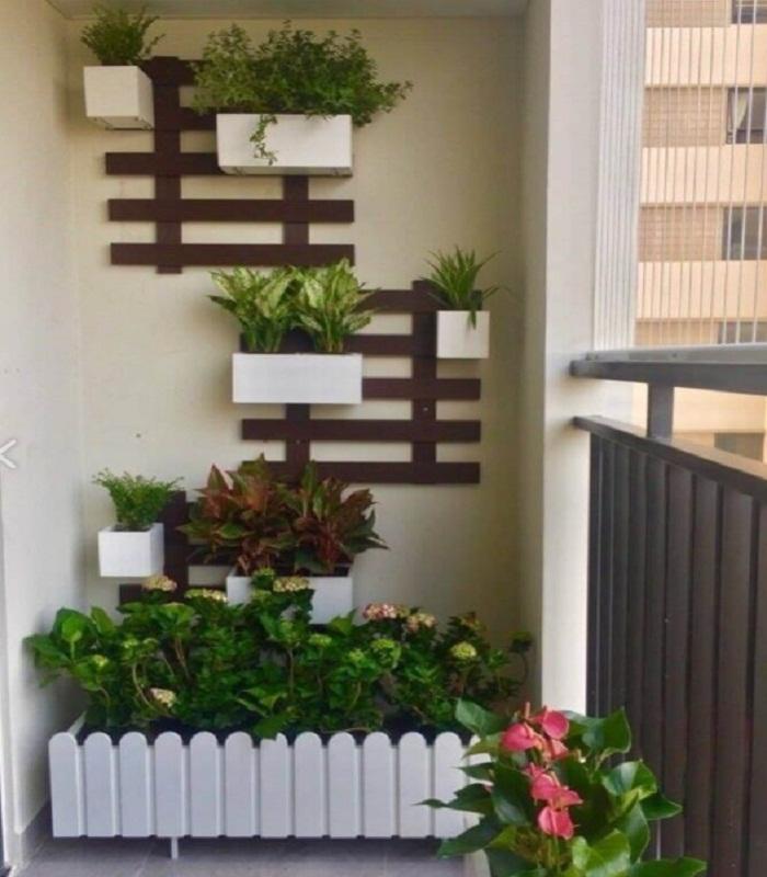 बड़े घर में रहने वाले लोग तो आंगन में बगीचा बना लेते हैं लेकिन आजकल ज्यादातर लोग अपार्टमेंट में शिफ्ट हो रहे हैं।