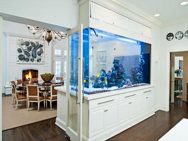 डबल एक्वेरियम घर को अट्रैक्टिव दिखाने के साथ डिवाइडर की तरह भी इस्तेमाल किया जा सकता है।