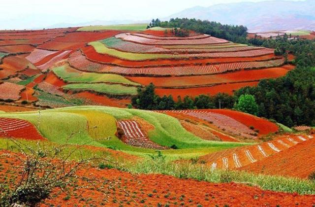 तो चलिए आज हम आपको चीन की 7 अजब-गजब जगहों के बारे में बताते हैं...