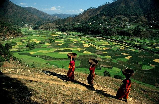 वहीं अगर आप शांत व प्राकृतिक नजारों का मजा लेना चाहते हैं तो इसके लिए कसौनी गांव का प्लान बनाएं।