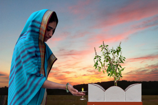 घर में आने वाले संकट की पूर्व सूचना देता है तुलसी का पौधा