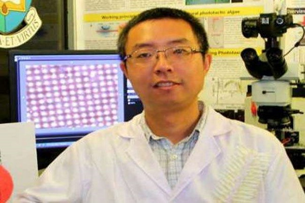 दुनिया का पहला सिंथेटिक नैनो रोबोट तैयार