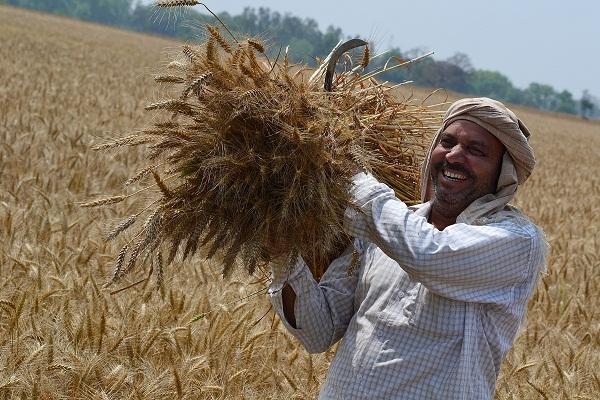 मोदी सरकार ने दी किसानों को बड़ी राहत