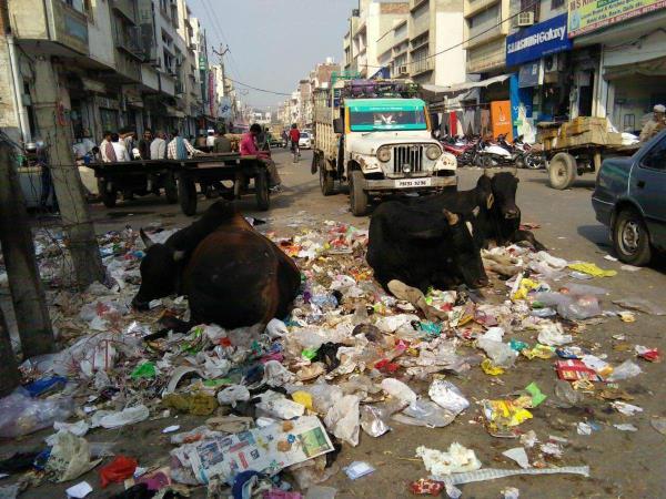 शहर में लगे कूड़े के ढेर,सफाई कर्मी बैठ धरने पर