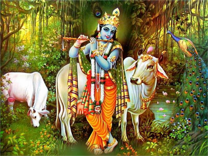 ध्यान रखें श्री कृष्ण की ये बात, मिलेगी विपरीत परिस्थितियों में मनचाही सफलता