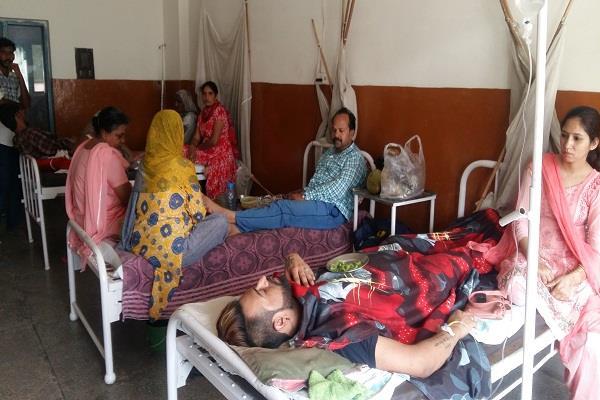 डेंगू का प्रकोपः फिरोजपुर में140 तो अबोहर में 4 लोग गिरफ्त में