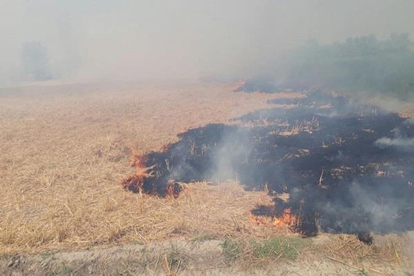 पराली को आग लगाने संबंधी सरकार व किसान जत्थेबंदियां हुईं 'आमने-सामने'