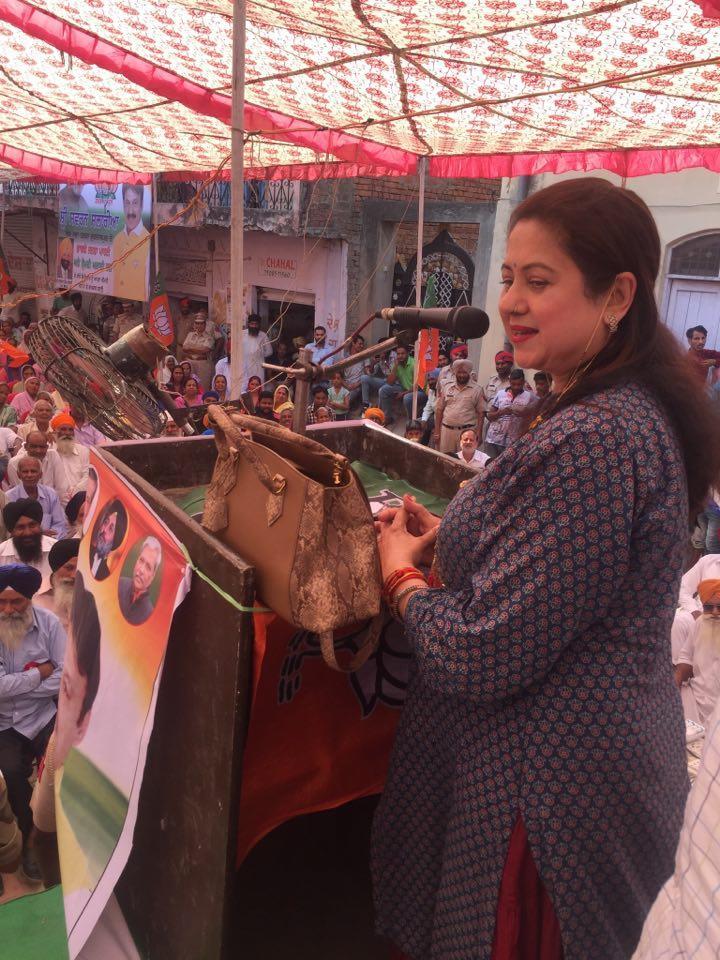 स्वर्ण सलारिया की चुनावी रैली में पहुंची अभिनेत्री प्रीति सप्रू, बीजेपी का किया गुणगान