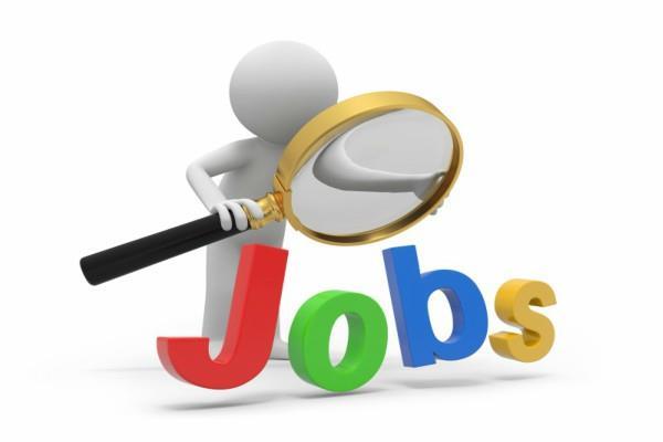 12वीं पास के लिए सरकारी नौकरी पाने का मौका, एेसे करें आवेदन