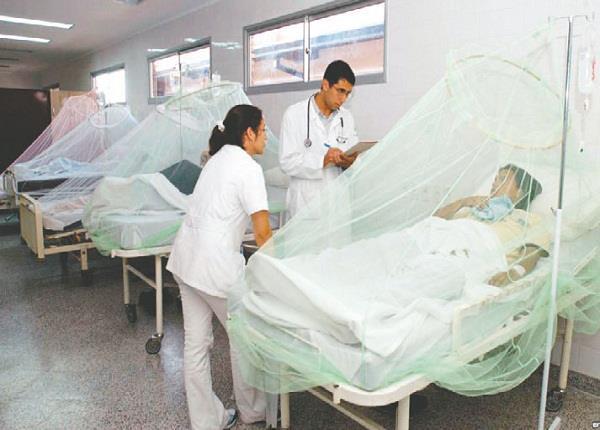 नहीं थम रहा डेंगू का कहर, 62 मामले आ चुके सामने