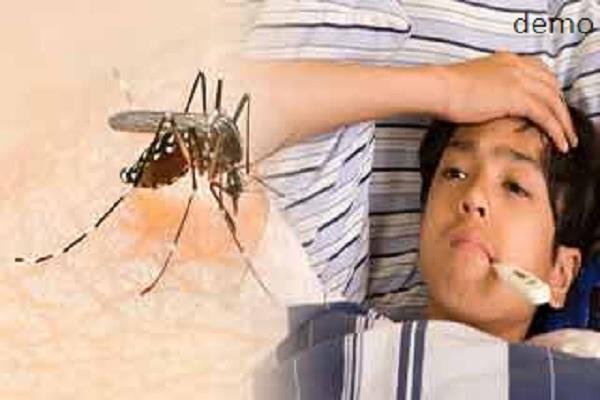 समाना में डेंगू ने पांव पसारे, एक दर्जन से अधिक मरीज सिविल अस्पताल में भर्ती