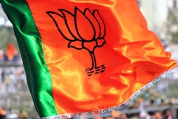 यहां भाजपा की जीत का जश्न बना चर्चा का विषय