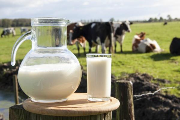 3 साल में 19 प्रतिशत बढ़ा दूध उत्पादन, डेयरी किसानों की आय में भी इजाफा