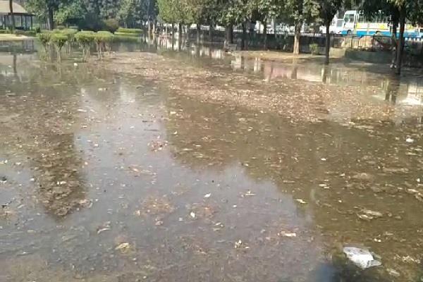 बहादुरगढ़ की इकलौती माईनर टूटी, जलमग्न हुअा देवीलाल पार्क
