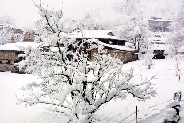 बर्फ बनी मुसीबत, 5वें दिन भी रैस्क्यू नहीं हो पाए घाटी में फंसे लोग