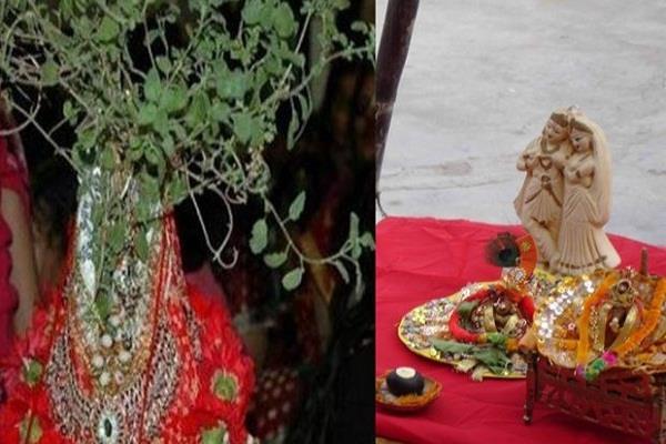 धन व बरकत के द्वार खोलने का सर्वोत्तम मार्ग, सूर्यास्त पर तुलसी के पास बोले ये मंत्र