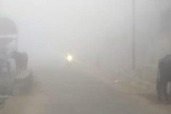 कोहरे का कहर: सड़कों पर बढ़ा दुर्घटनाओं का ग्राफ