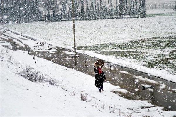 ताजा हिमपात के बाद श्रीनगर-लेह मार्ग बंद