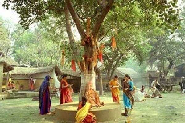 इन वृक्षों की करें पूजा, जीवन की परेशानियां व कुंडली के दोष होंगे दूर
