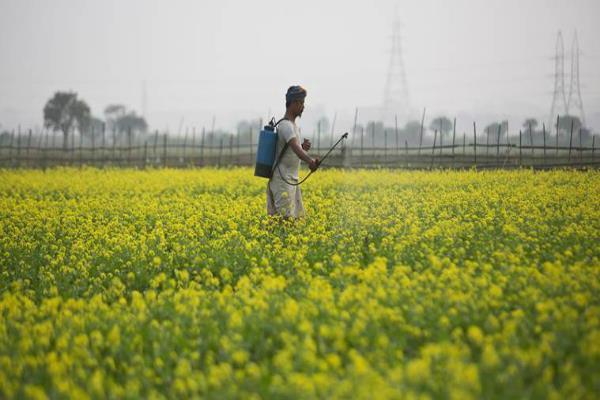किसानों का कर्ज नहीं होगा माफ, सरकार ने नहीं दिया आश्वासन