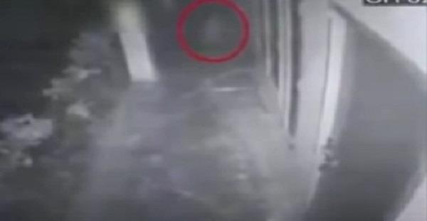 पाक चैनल ने दिखाई ओमपुरी की आत्मा !  खूब उड़ाया मजाक(देखें वीडियो)