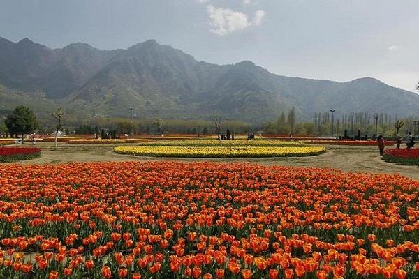 धरती का स्वर्ग बनेगा और सुंदर, फूलों से गुलजार होगा वादी-ए-कश्मीर