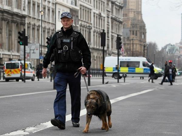 ब्रिटेन संसद की सुरक्षा करेंगे कुत्ते