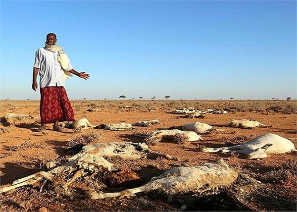 यहां गंदा पानी और जानवरों का सड़ा मांस खाने को मजबूर हुए लोग