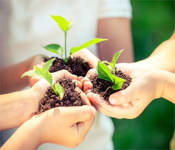 World Environment Day: घर से ही करें शुरूआत