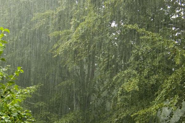 1 से 14 जून के बीच हुई 10% ज्यादा बारिश
