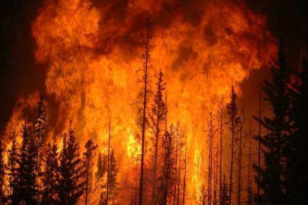 कनाडा: जंगल में लगी आग के बाद 36,000 लोग घर छोड़ने को मजबूर