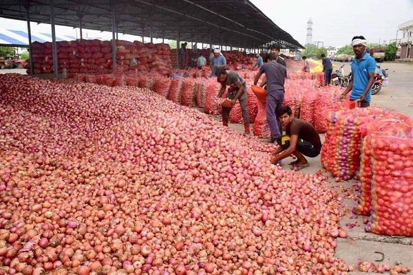 मध्य प्रदेश में हजारों टन प्याज बर्बाद, नहीं मिल रहा कोई खरीदार