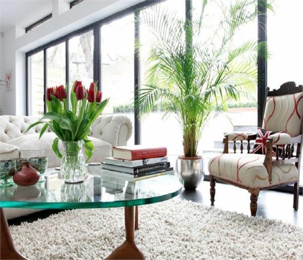 घर की खूबसूरती को बढ़ाते हैं रंग-बिरंगे फूल
