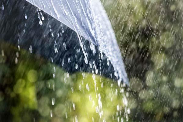 सावन की 'झड़ी' से मौसम हुआ सुहावना, किसानों के चेहरों पर लौटी रौनक