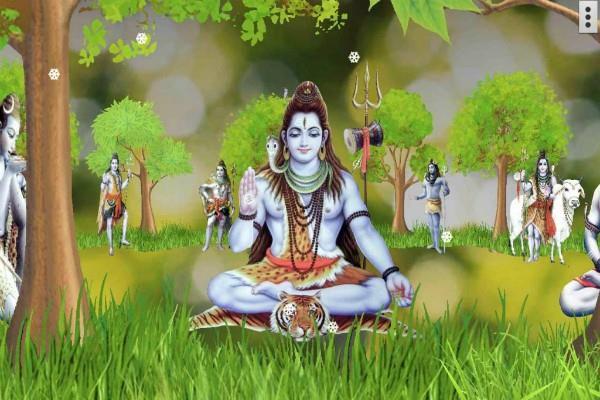 चाहिए धन तो सोमवार को बिल्वपत्र पेड़ के पास, शिव भक्त को दें ये चीज