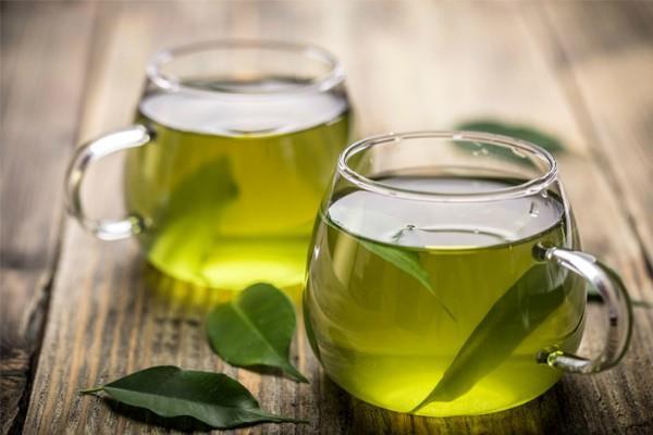 राजस्थान में तैयार होगी जैतून के पत्तों से बनी Green tea