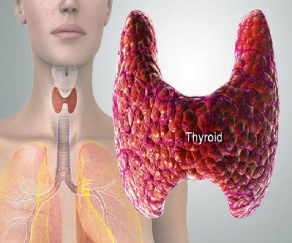 ये हैं थाइरॉयड के संकेत और इससे निजात पाने के घरेलू नुस्खे