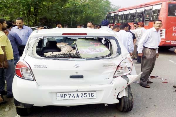 बेकाबू बस ने ट्रक सहित 3 वाहनों को मारी टक्कर, बड़ा हादसा टला